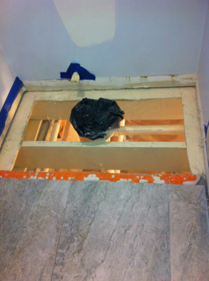 after image of mold remediation on bathroom toilet in Libertyville IL