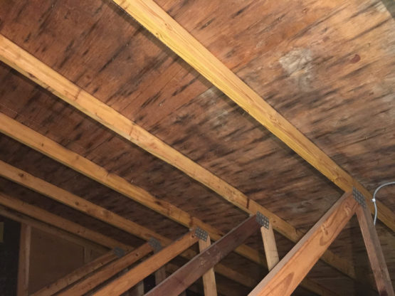 a picture before Alliance Restoration did an attic mold remediation in Vernon Hills, IL