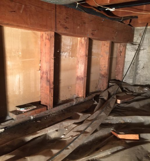 wet, moldy basement and crawl space before mold remediation and waterproofing services in Brookfield, IL.