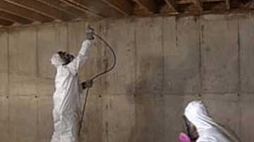 Basement and Crawl Space Mold Cleanup